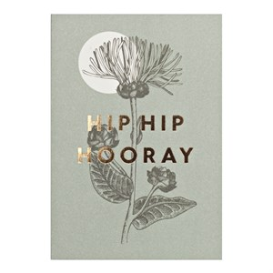 Small Greeting Card-Hip Hip Hooray