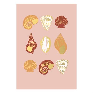 Small Greeting Card-Sea Shells
